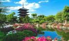 Покупайте у нас проездные по Японии Japan Rail Pass